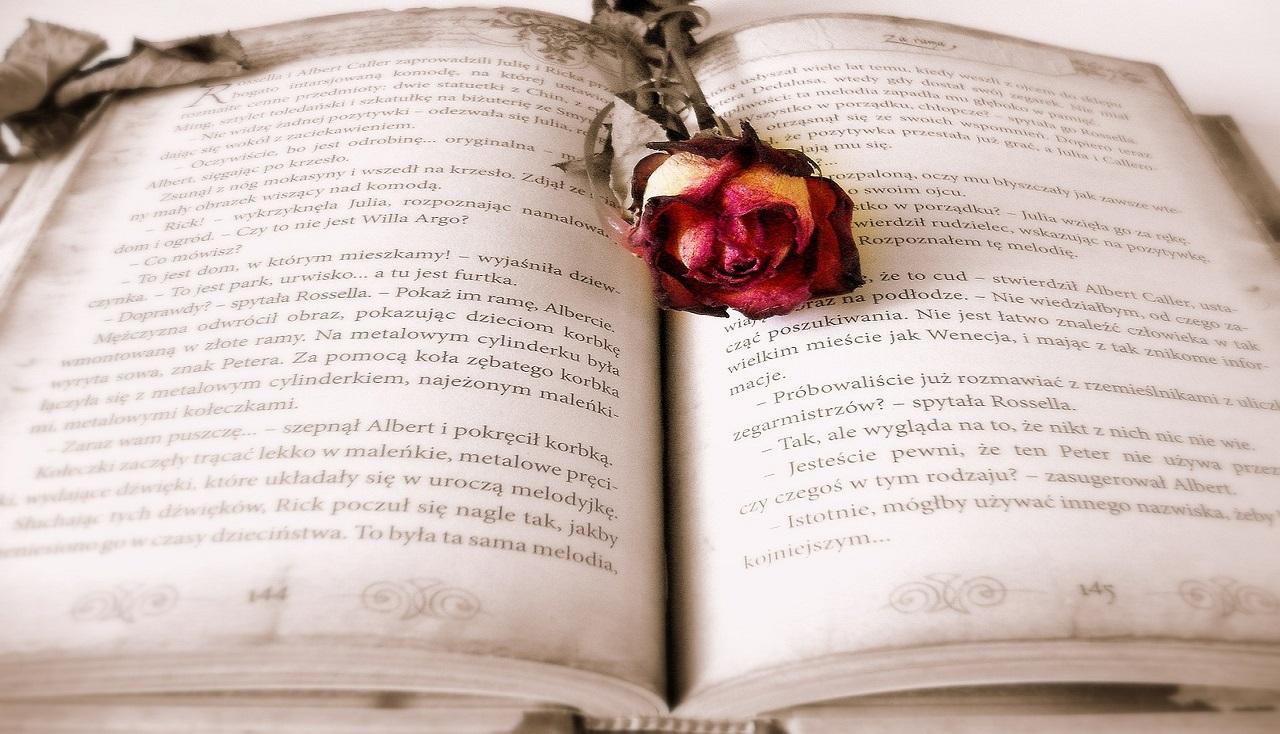 Livre audio roman